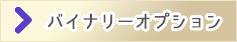 投資別の運用口座【バイナリーオプション】